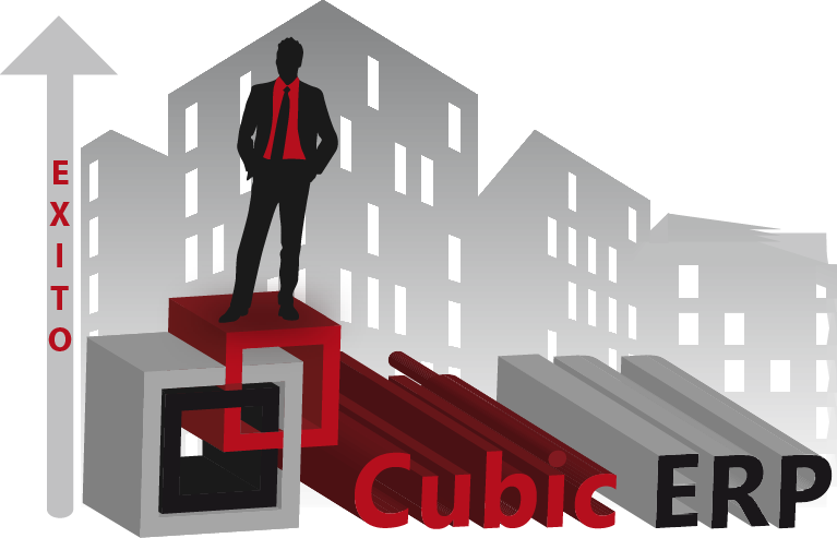 CubicERP CMS - a big picture